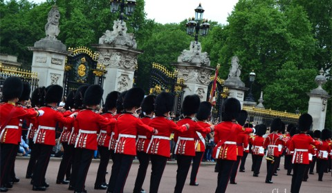 Buckingham-Palace-guard