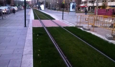gazon-linie-tramvai