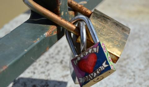 Iubire legata - Zaragoza