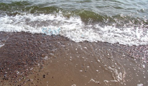 marea-baltica