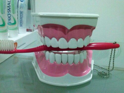 la dentist iasi
